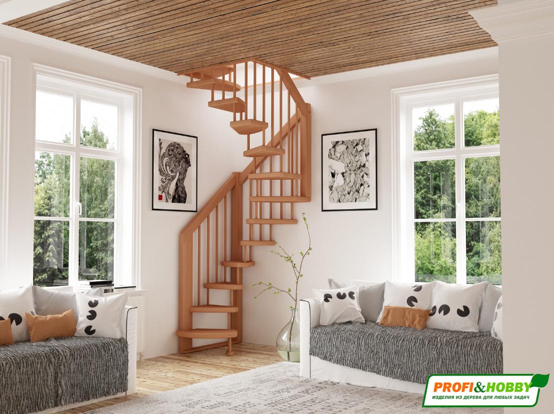 Лестница Profi&Hobby ЛВ-1.0м